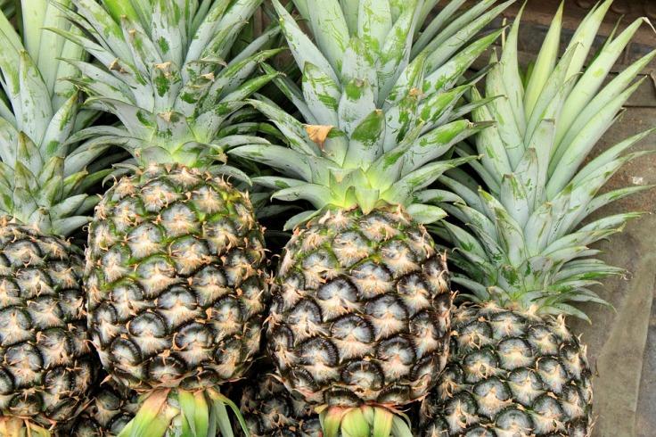 pineapple-2901430_960_720.jpg